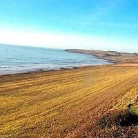 Cork seaside farm sells for €1.42m at 'electric' auction